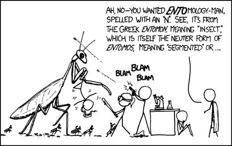 xkcd | Entomology Man