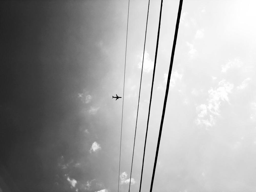 Snapseed(3)